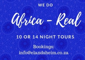 We Africa+ shweshwe